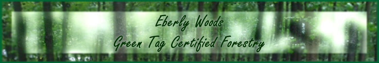 Eberly Woods